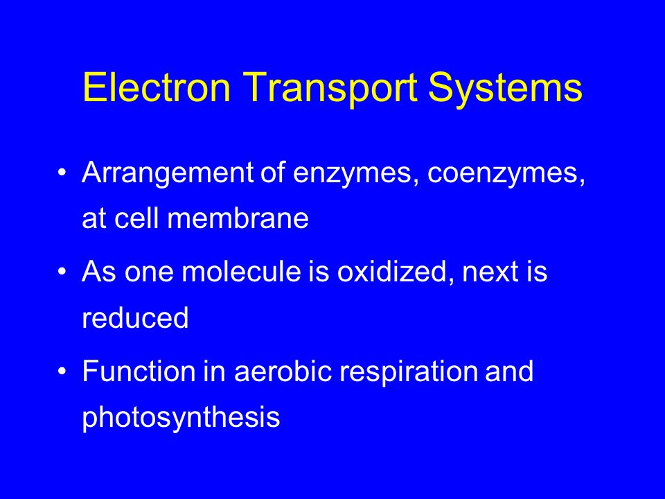 Electron Transport Systems