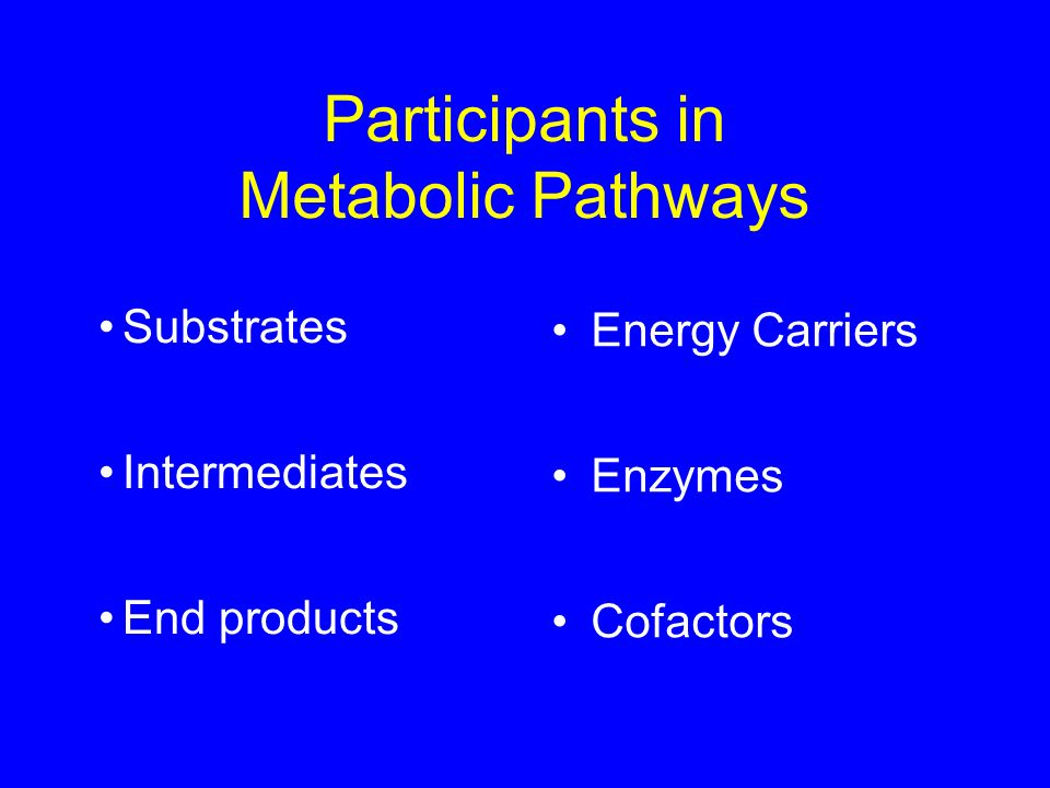 Participants in Metabolic Pathways