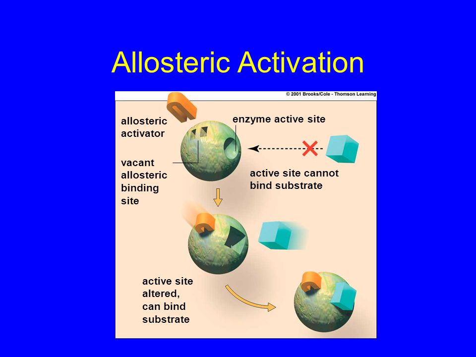 Allosteric Activation