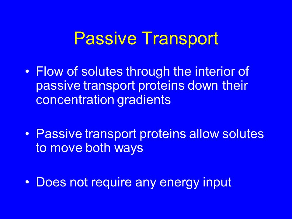 Passive Transport Flow of solutes through the interior of passive transport proteins down their concentration gradients.