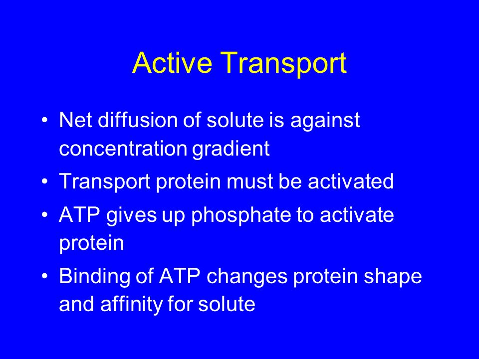 Active Transport Net diffusion of solute is against concentration gradient. Transport protein must be activated.