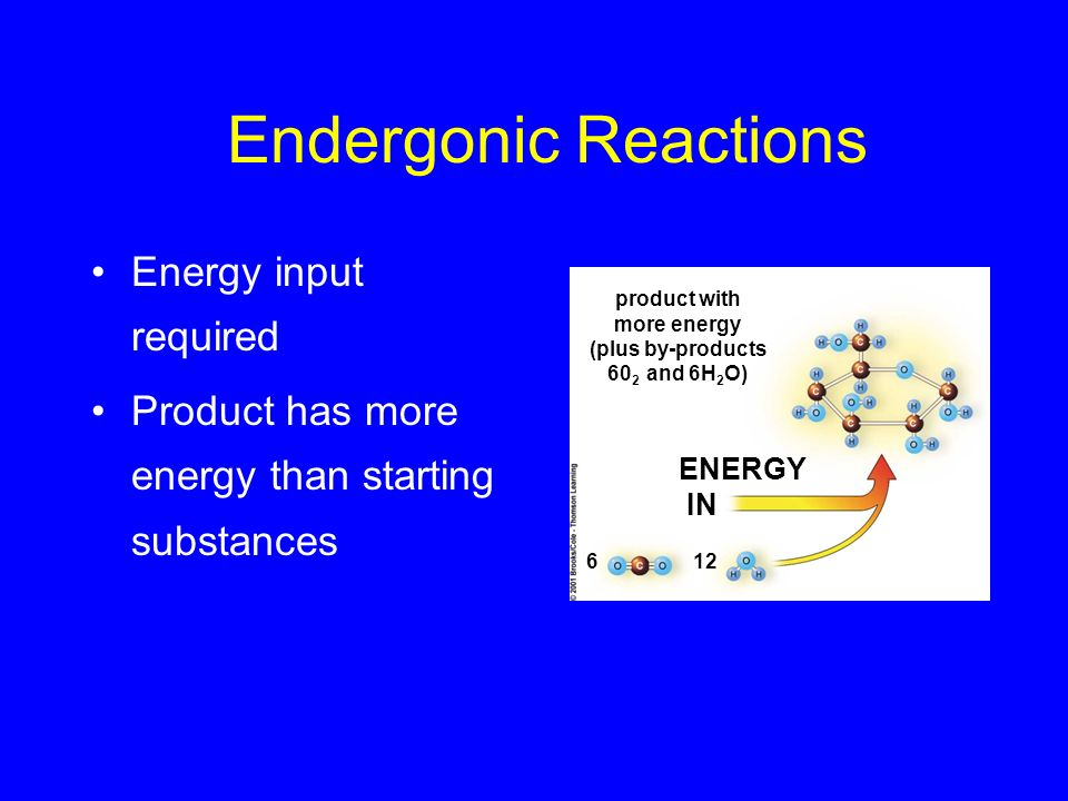 Endergonic Reactions Energy input required