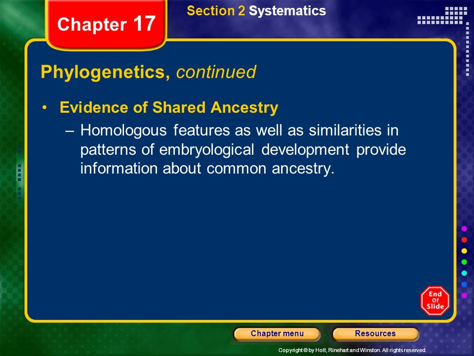 Phylogenetics, continued