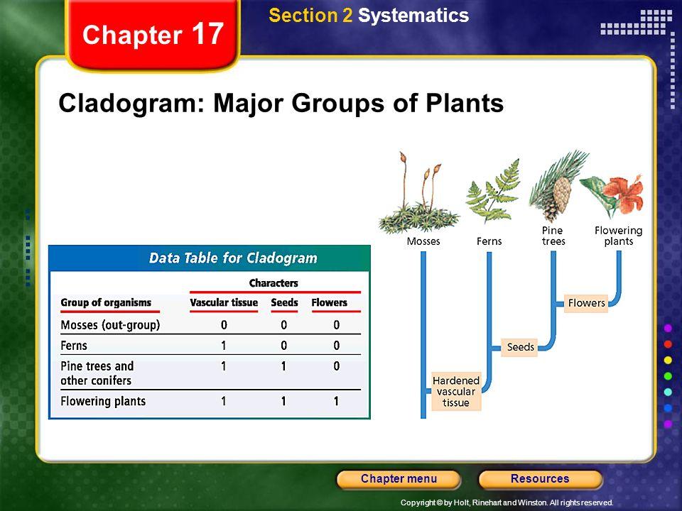 Cladogram: Major Groups of Plants