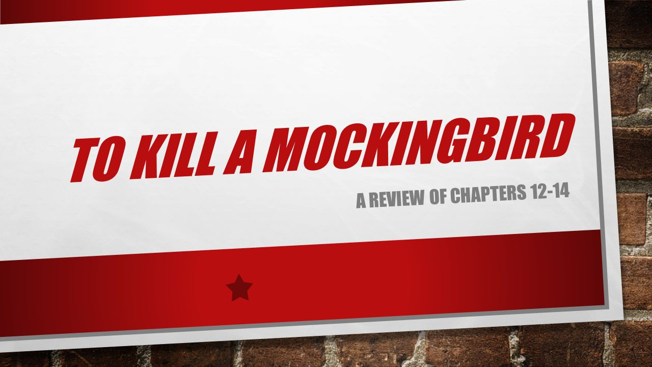 To kill a mockingbird chapters 1 4