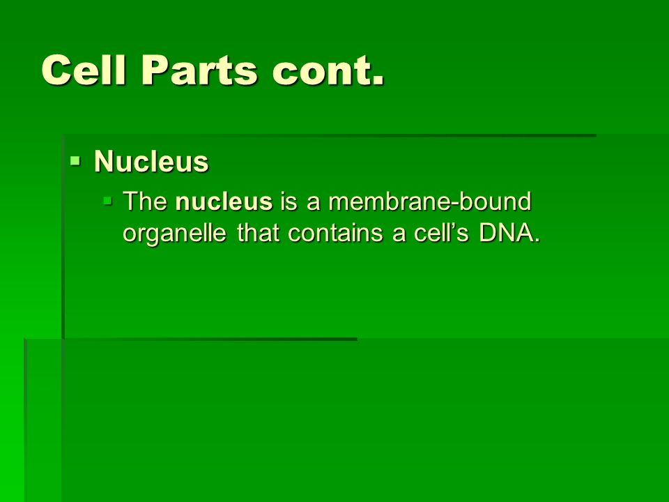 Cell Parts cont. Nucleus