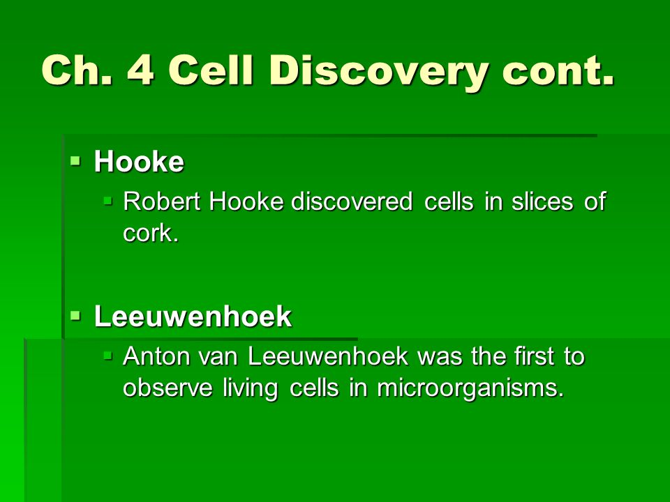 Ch. 4 Cell Discovery cont. Hooke Leeuwenhoek