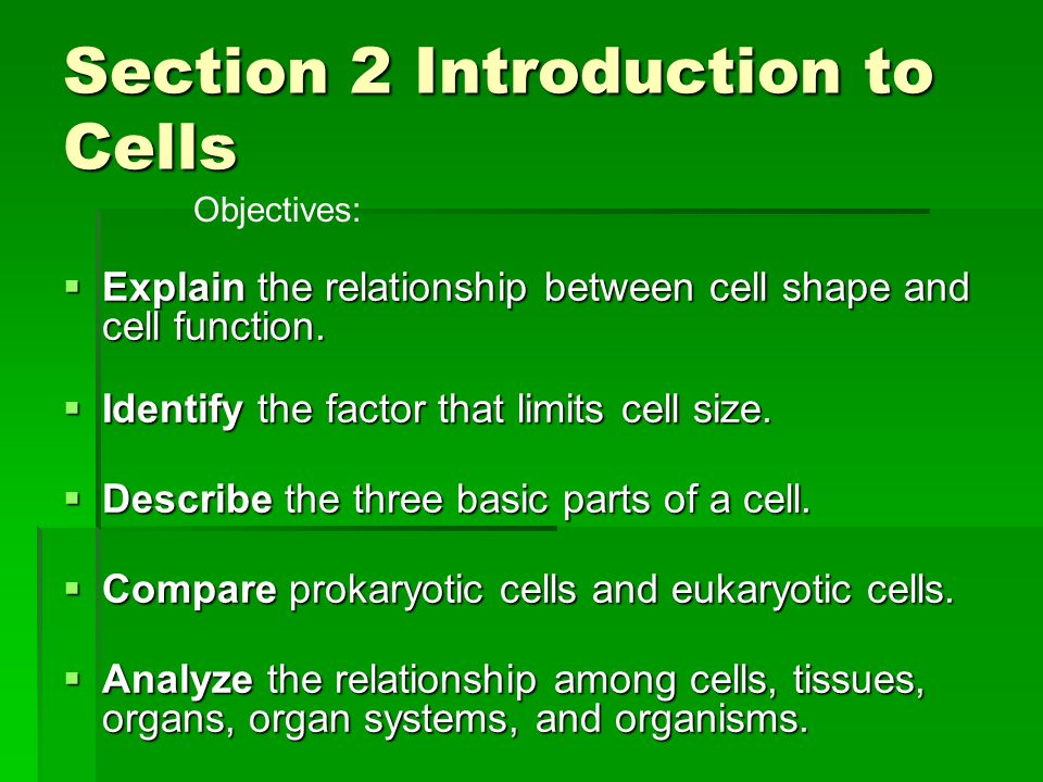 Section 2 Introduction to Cells