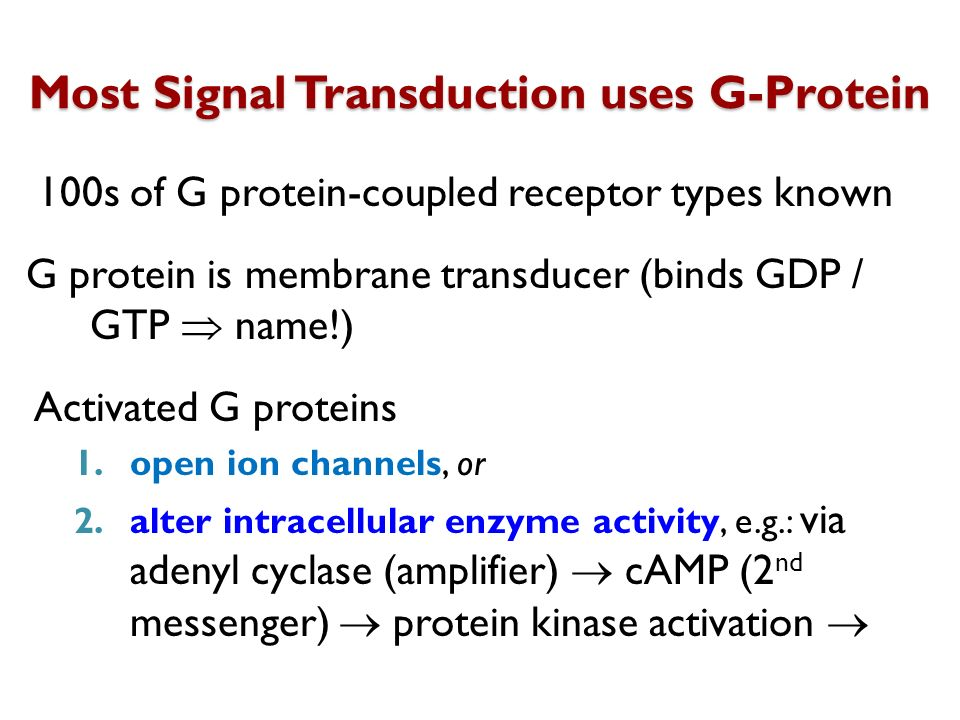 Most Signal Transduction uses G-Protein