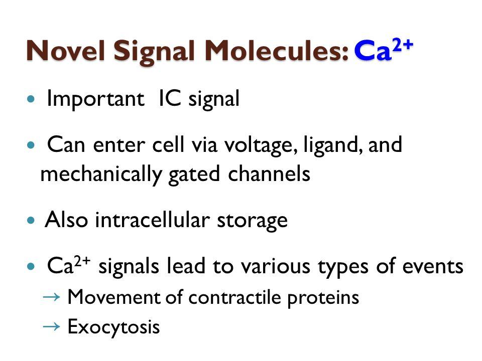 Novel Signal Molecules: Ca2+
