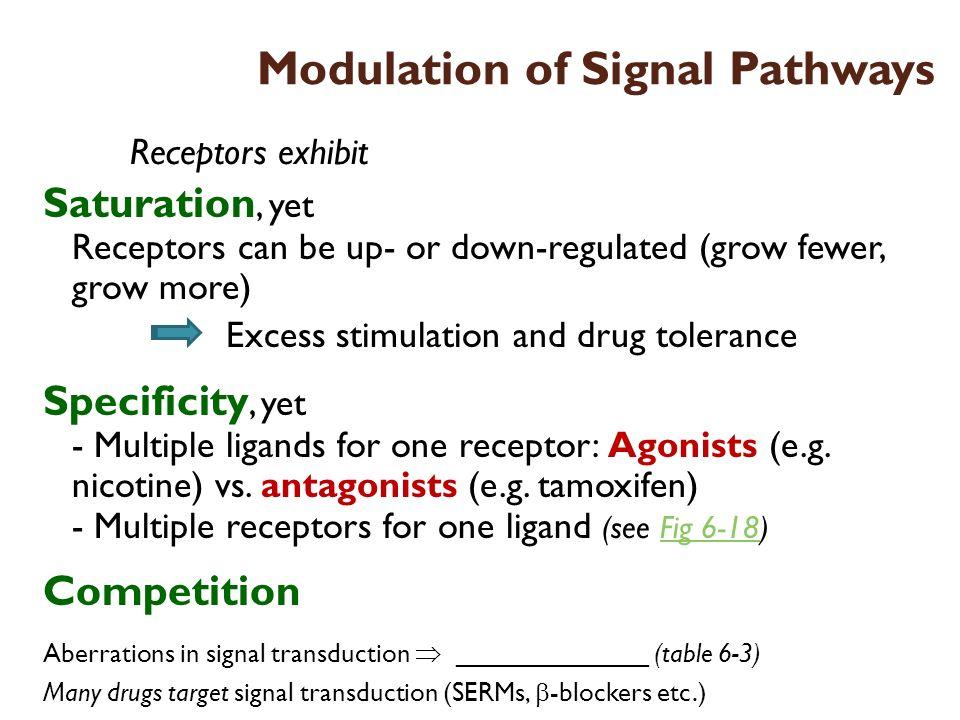 Modulation of Signal Pathways