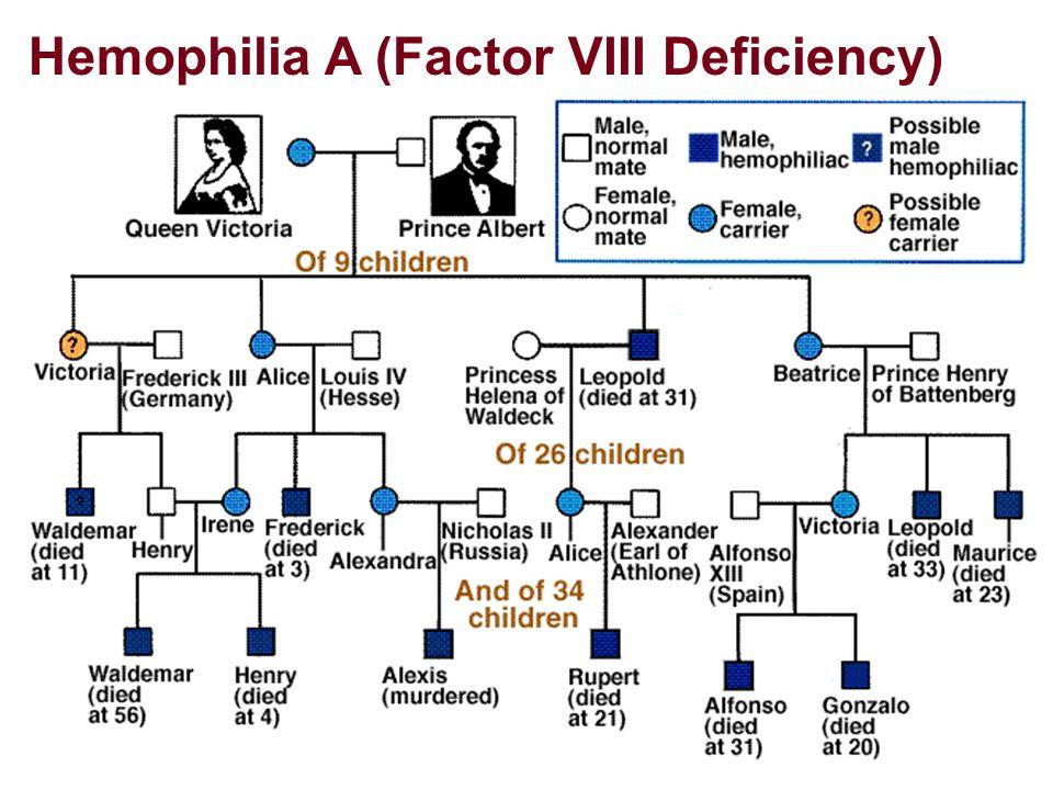 Hemophilia A (Factor VIII Deficiency)