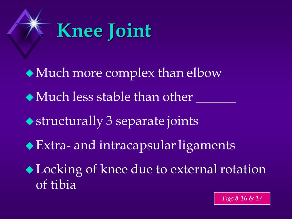 Knee Joint Much more complex than elbow