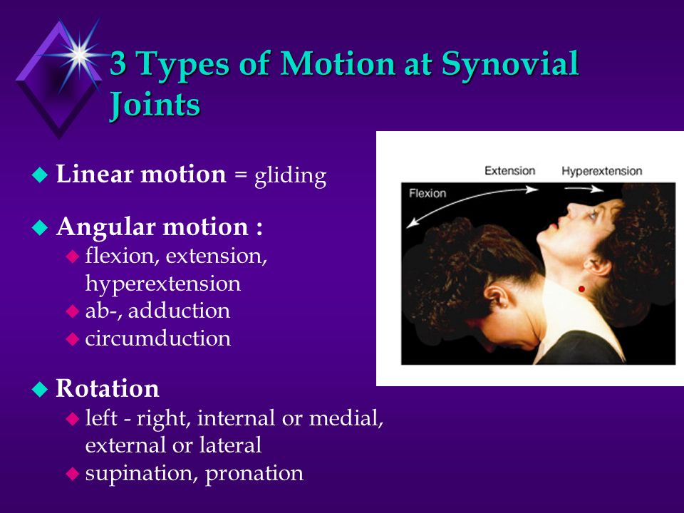 3 Types of Motion at Synovial Joints