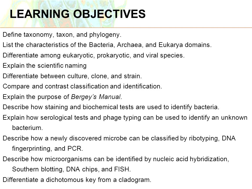 LEARNING OBJECTIVES Define taxonomy, taxon, and phylogeny.
