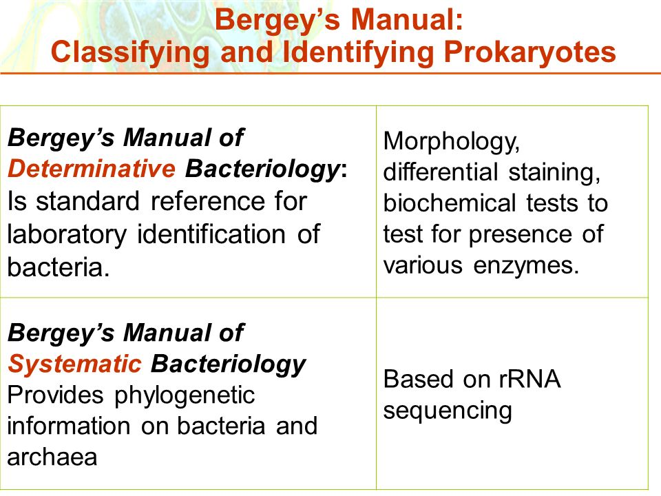 Bergey's Manual: Classifying and Identifying Prokaryotes