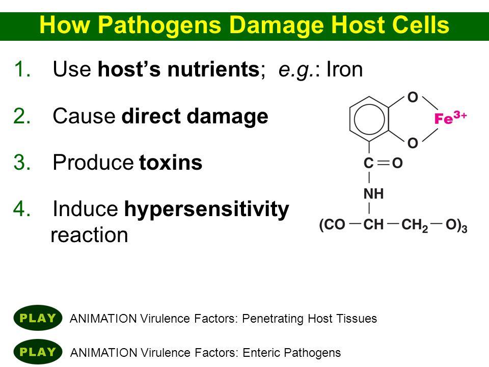 How Pathogens Damage Host Cells