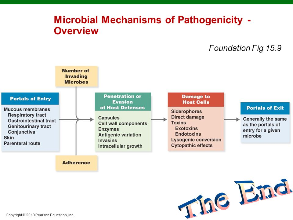 Microbial Mechanisms of Pathogenicity - Overview