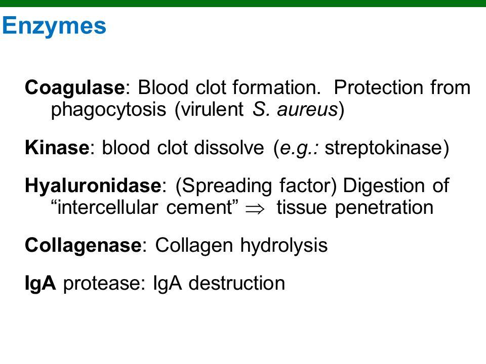 Enzymes Coagulase: Blood clot formation. Protection from phagocytosis (virulent S. aureus) Kinase: blood clot dissolve (e.g.: streptokinase)