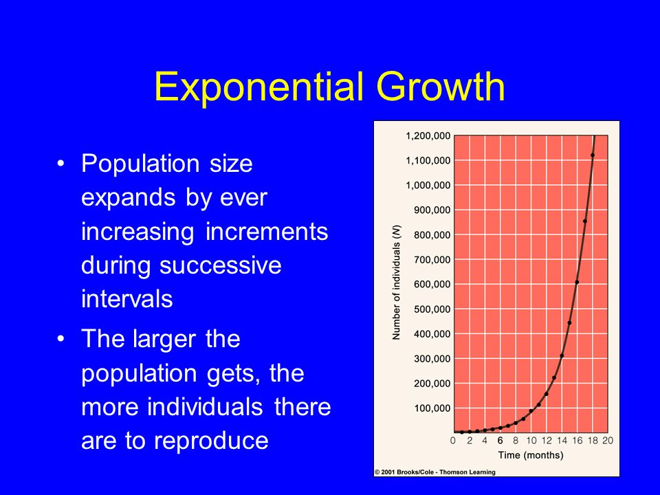 Exponential Growth Population size expands by ever increasing increments during successive intervals.
