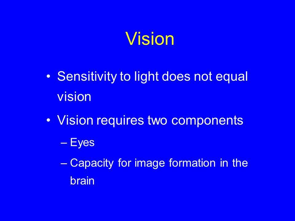 Vision Sensitivity to light does not equal vision