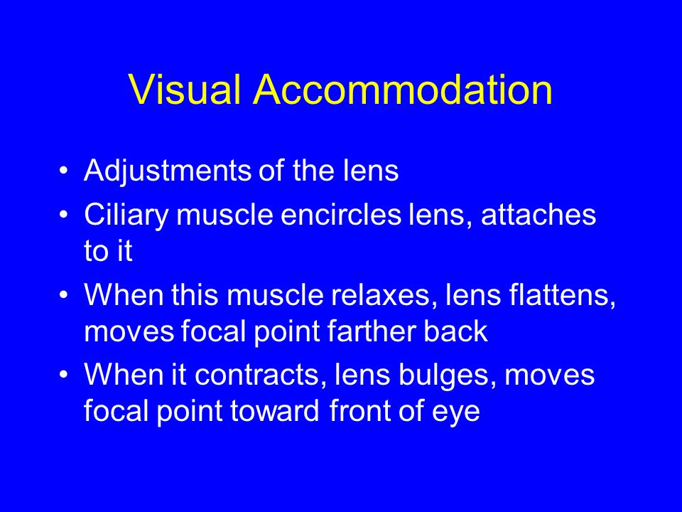 Visual Accommodation Adjustments of the lens