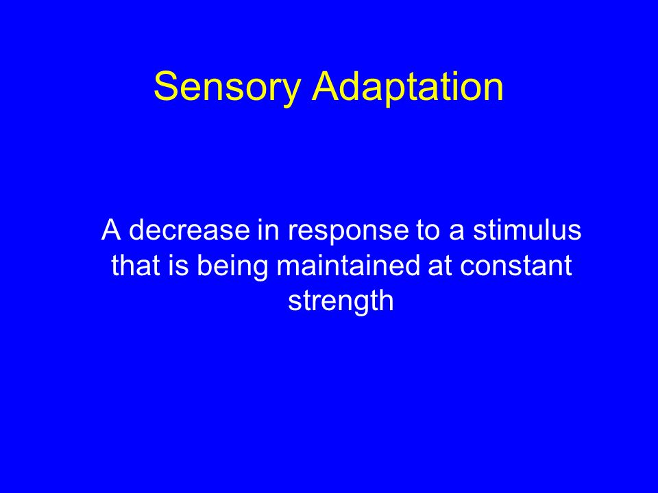 Sensory Adaptation A decrease in response to a stimulus that is being maintained at constant strength.