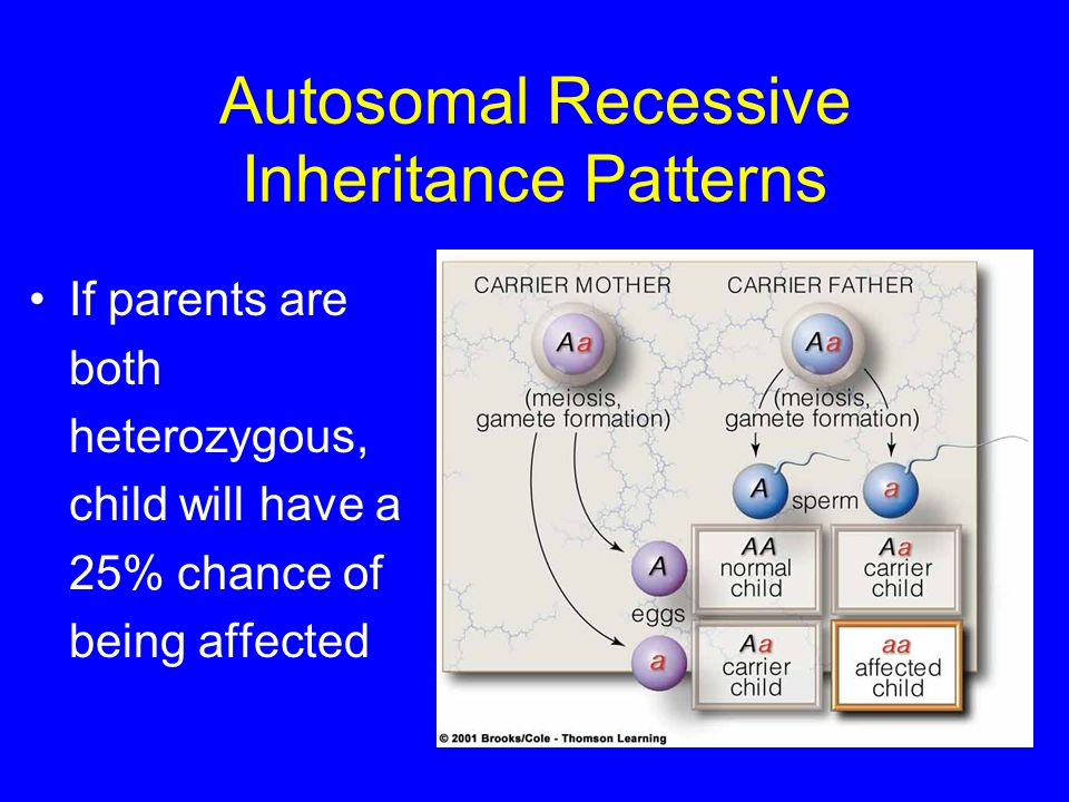 Autosomal Recessive Inheritance Patterns