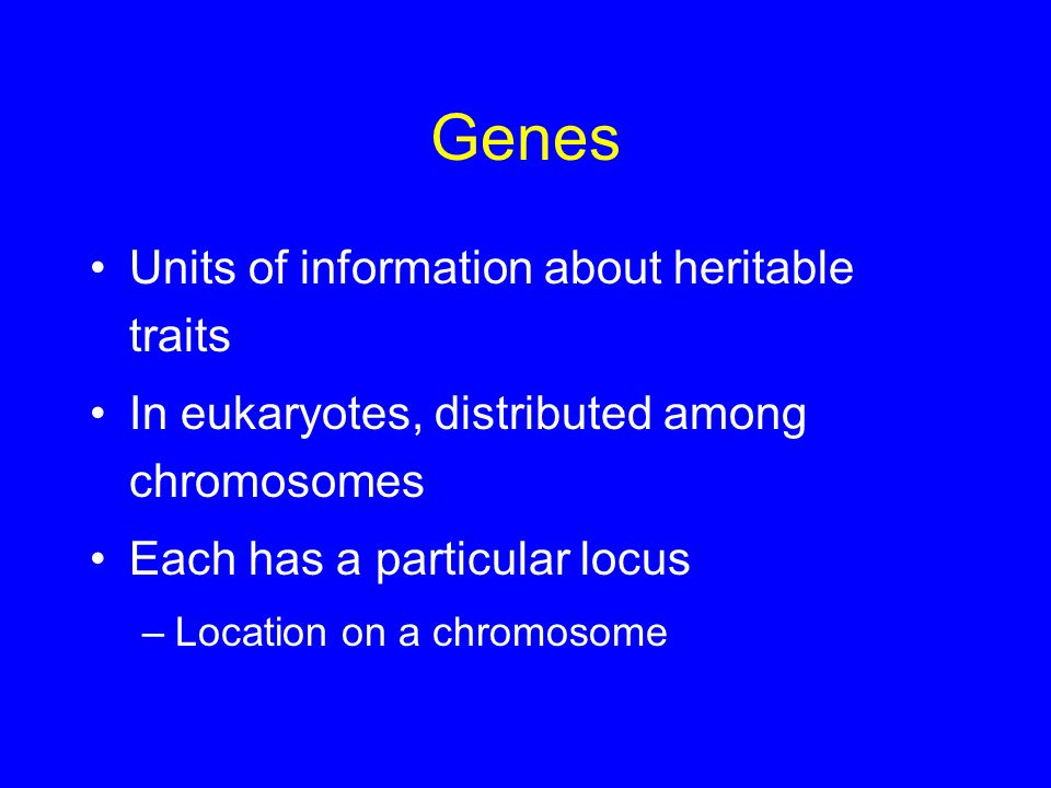 Genes Units of information about heritable traits