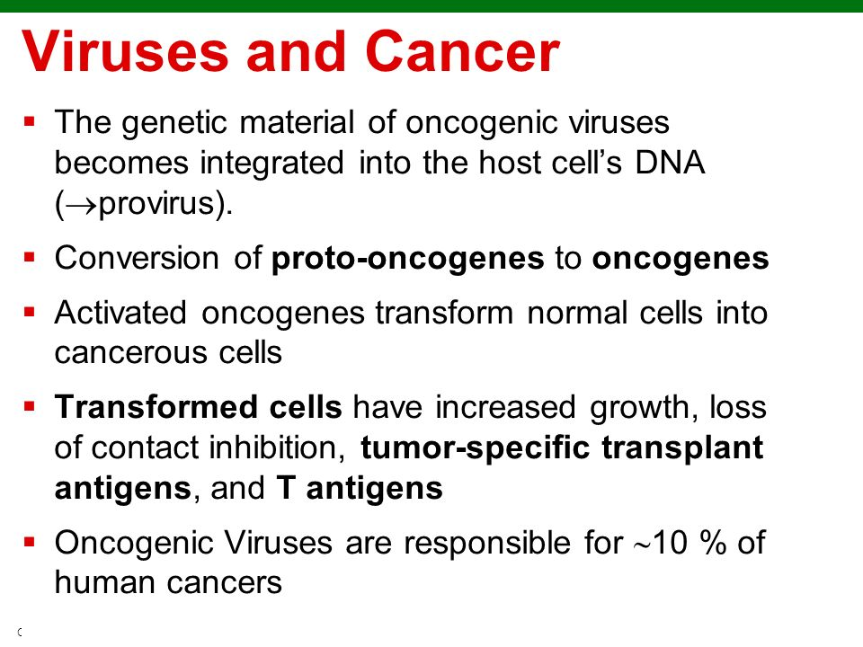 Viruses and Cancer The genetic material of oncogenic viruses becomes integrated into the host cell's DNA (provirus).