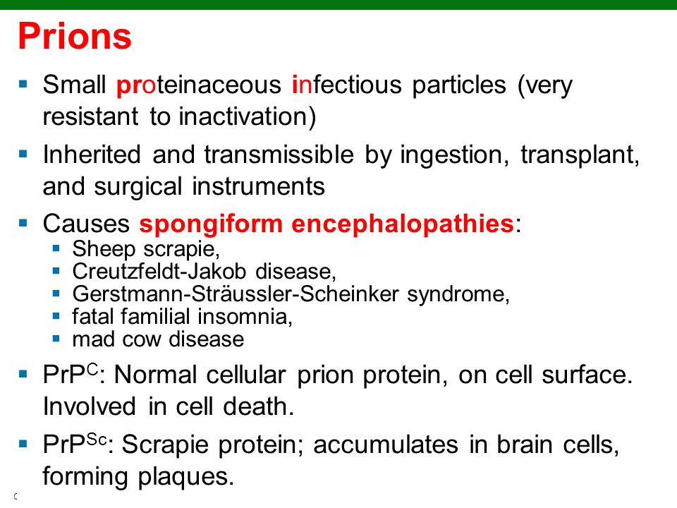 Prions Small proteinaceous infectious particles (very resistant to inactivation)
