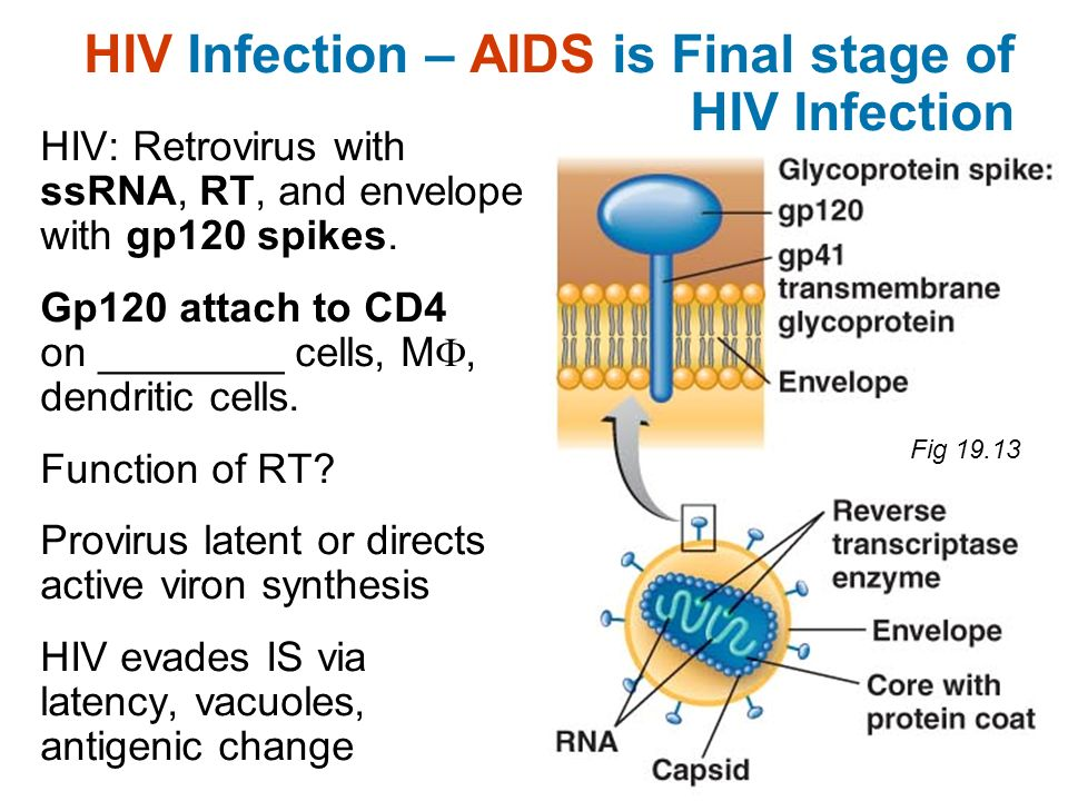 HIV Infection – AIDS is Final stage of HIV Infection
