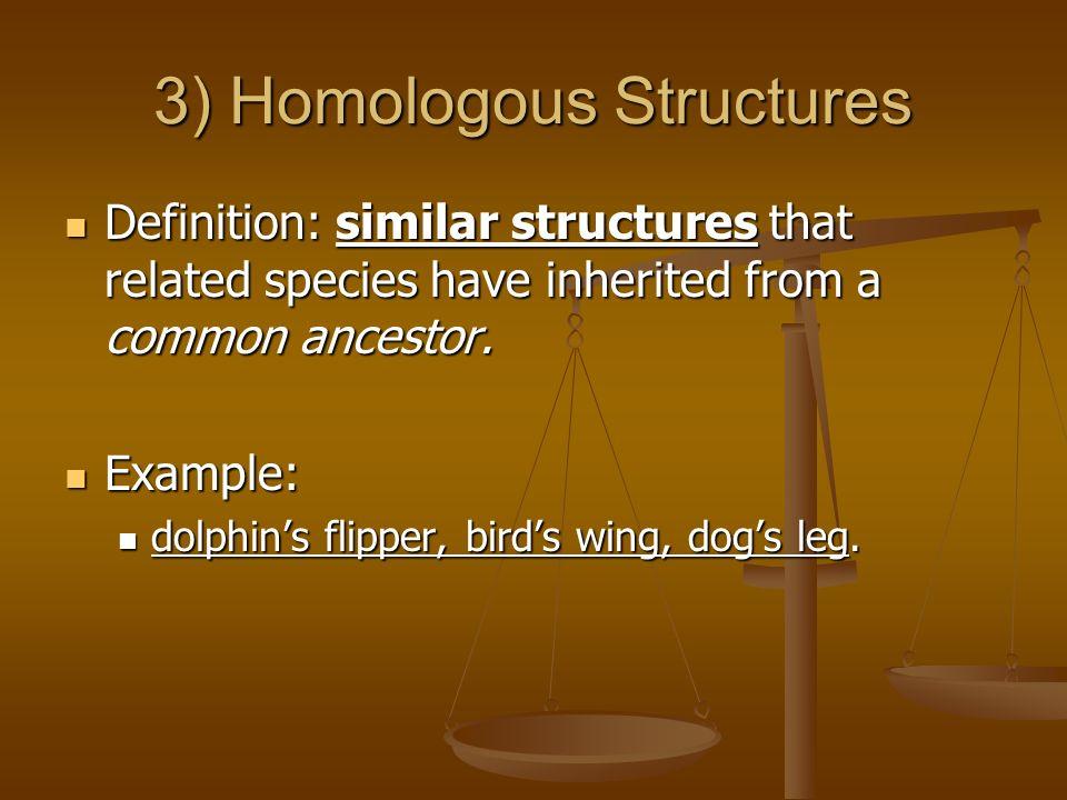 3) Homologous Structures