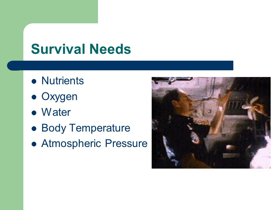 Survival Needs Nutrients Oxygen Water Body Temperature