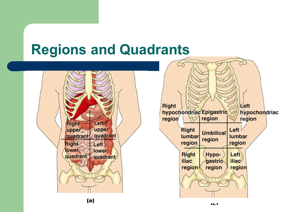 Regions and Quadrants