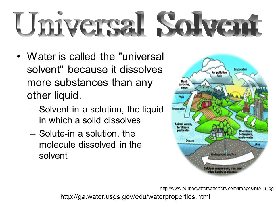 water as a universal solvent Water is called the universal solvent because more substances dissolve in water than in any other chemical this has to do with the polarity of each water molecule the hydrogen side of each water (h2o) molecule carries a slight positive electric charge, while the oxygen side carries a slight negative electric charge.