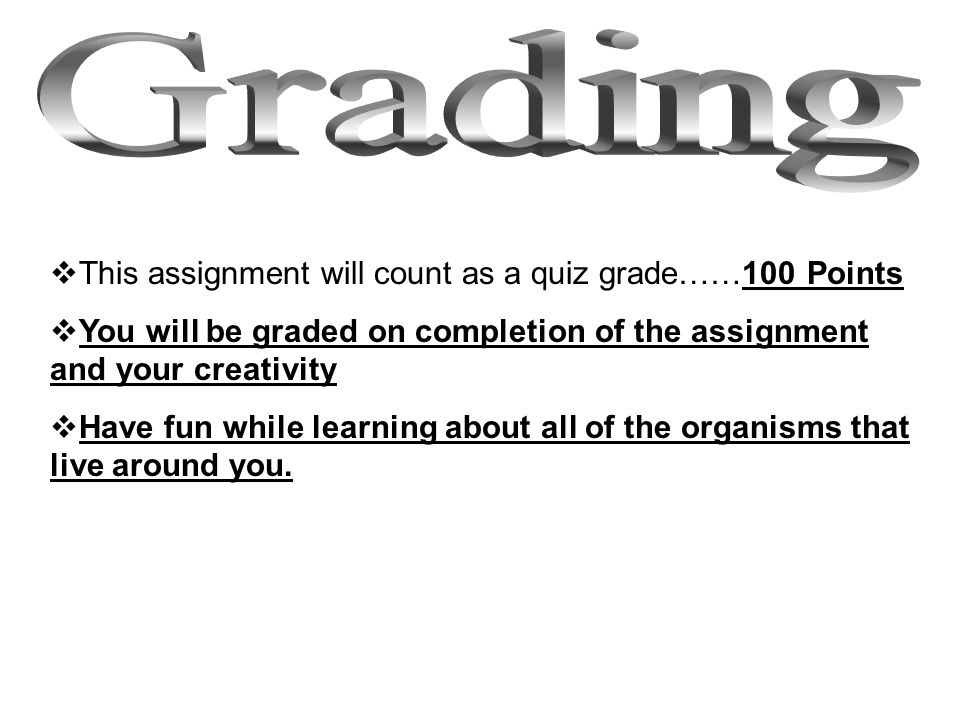 Grading This assignment will count as a quiz grade……100 Points