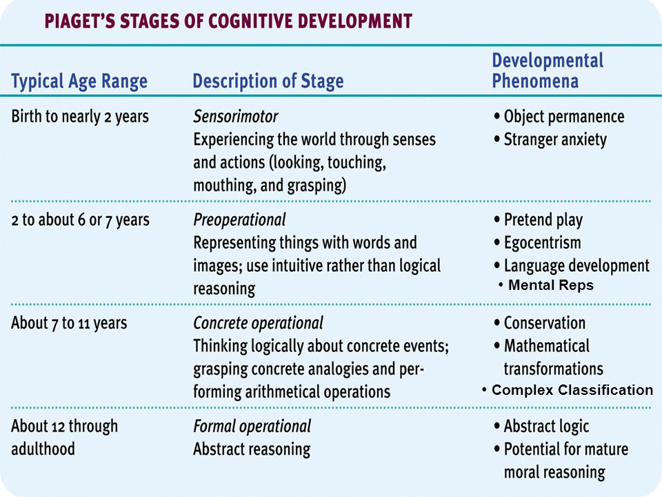 piagets four stages of cognitive development essay Cognitive development essay  an analysis of the four types of development  of activities ranging from physical and motor to social and cognitive development.