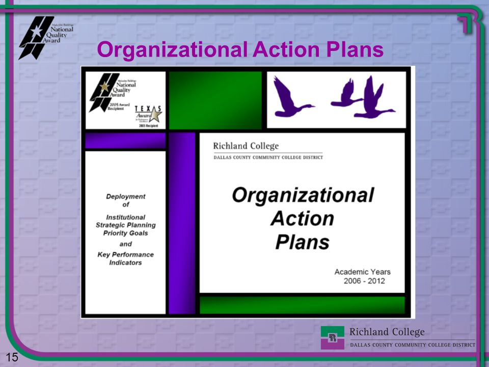 Organizational Action Plans