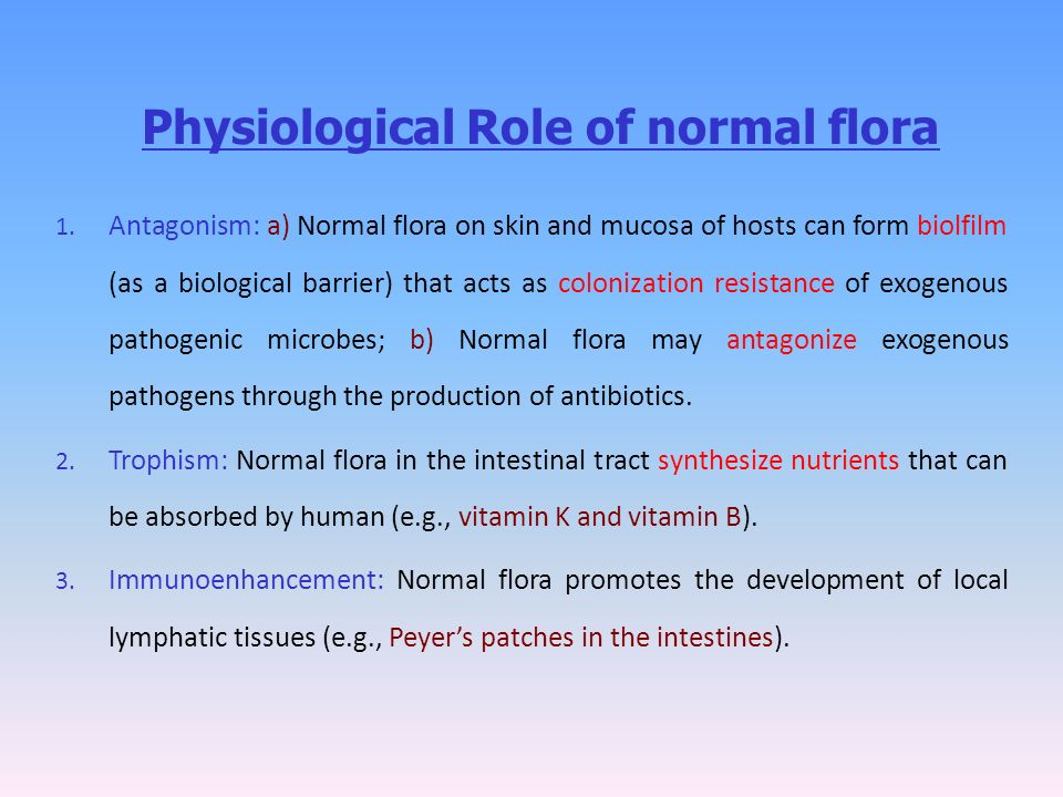 relationship between normal flora and a host