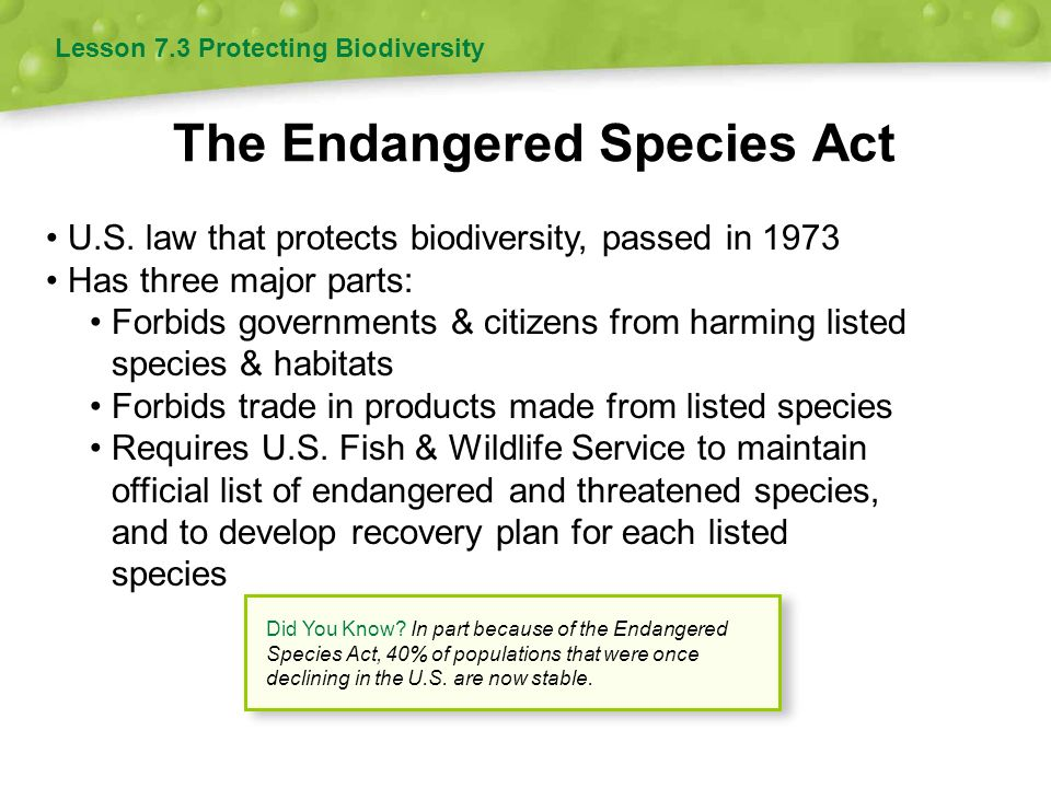 Endangered Species Act of 1973