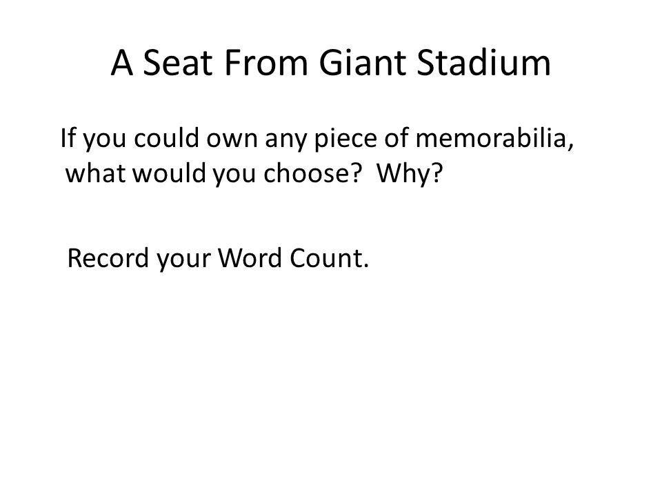 A Seat From Giant Stadium