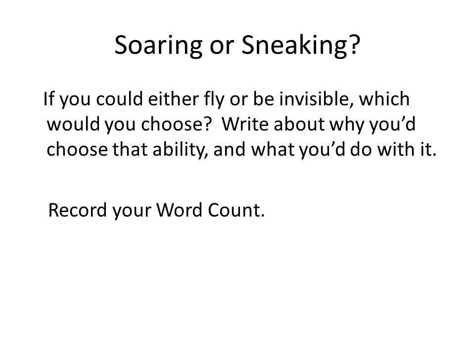 Soaring or Sneaking