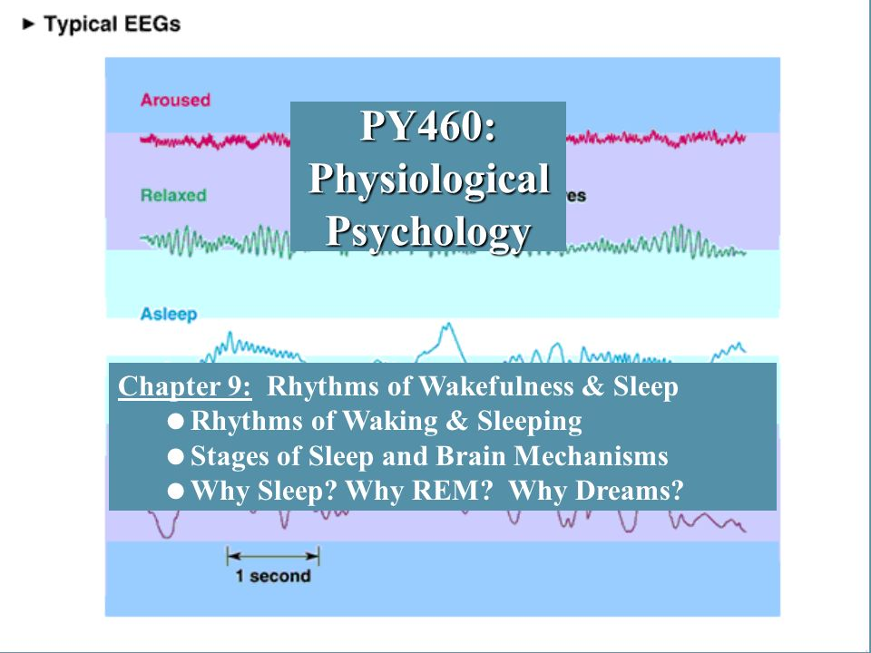 physiological psychology Physiological psychology schachter and singer (1962) dement and kleitman (1957) sperry (1968) raine (1997) physiological psychology focuses on the relationship between our biological makeup and our behaviour and experiences this area of psychology can be very convincing.