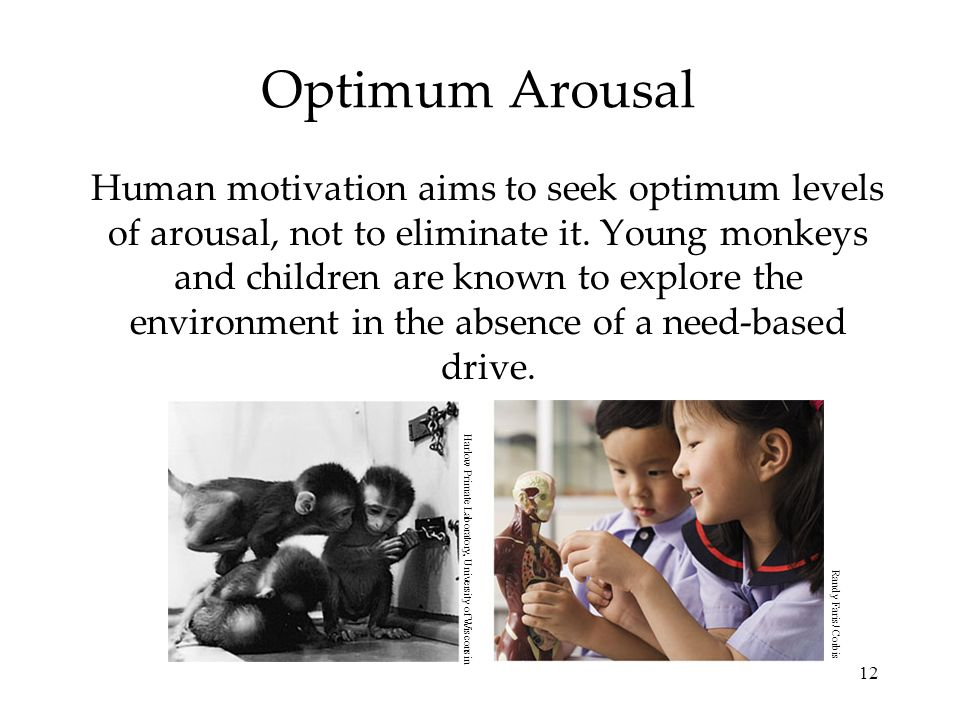 Optimum Arousal