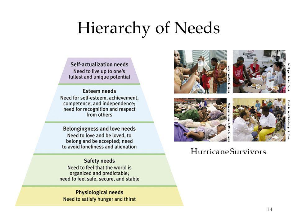 Hierarchy of Needs Hurricane Survivors Joe Skipper/ Reuters/ Corbis