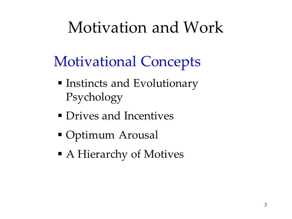 Motivation and Work Motivational Concepts