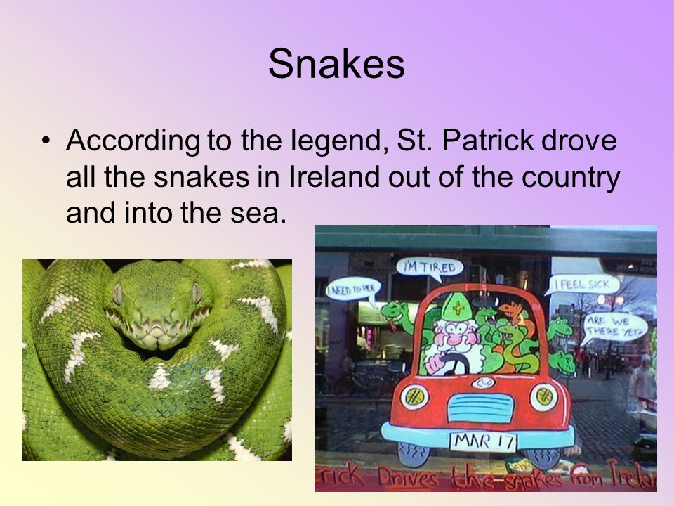 Snakes According to the legend, St.