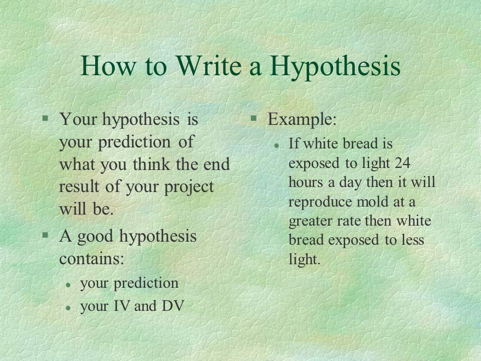 when writing a research paper where does the hypothesis go