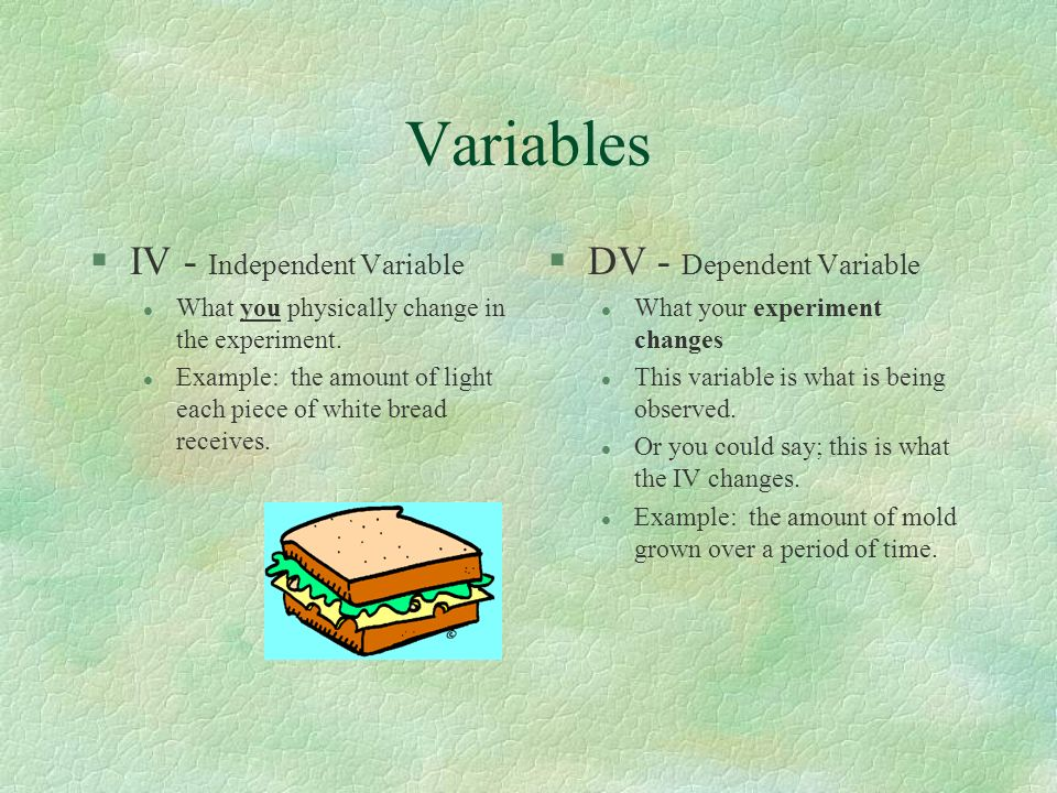 Variables IV - Independent Variable DV - Dependent Variable
